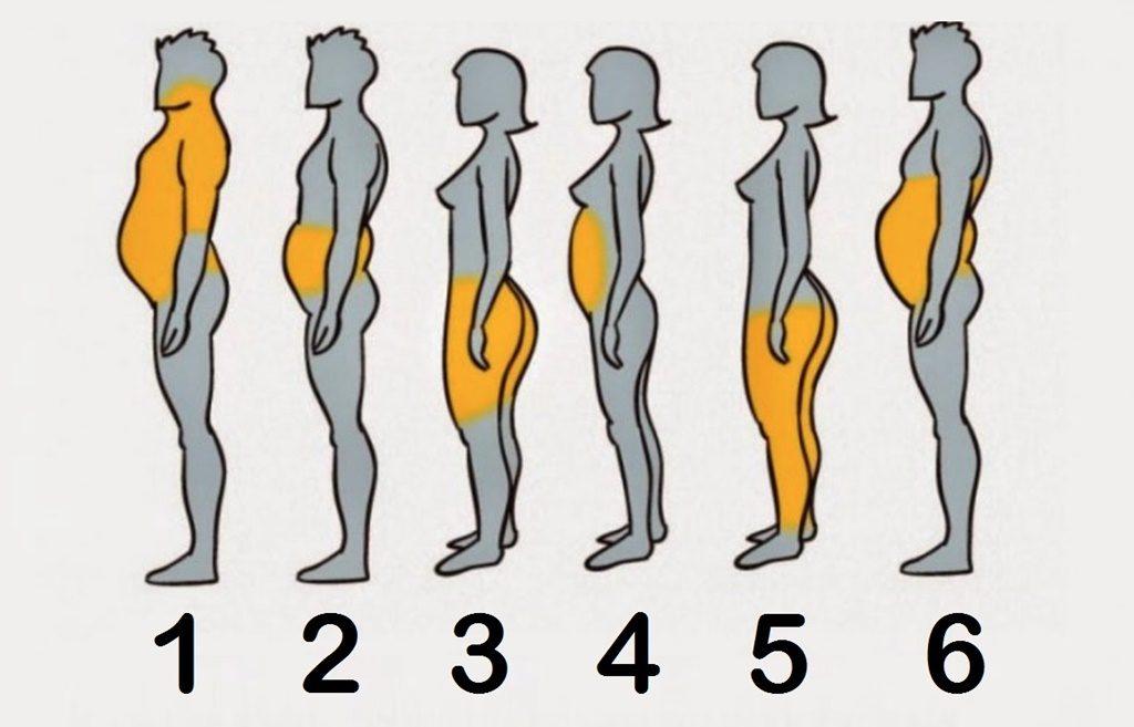 cum pot să și piardă endomorfurile de grăsime corporală)