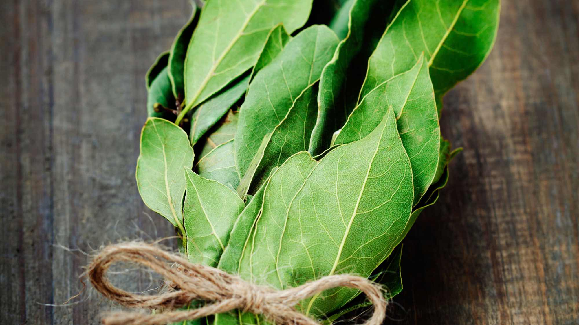 Frunză de dafin de prostatită ,ce ulei este bun pentru adenomul de prostată