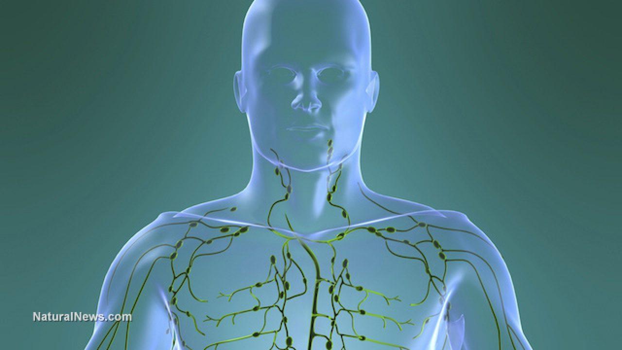 ulei de ricin pentru sistemul limfatic)